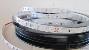 24v Led Lights UL Approved 2 Years Warranty Waterproof Warm White Light