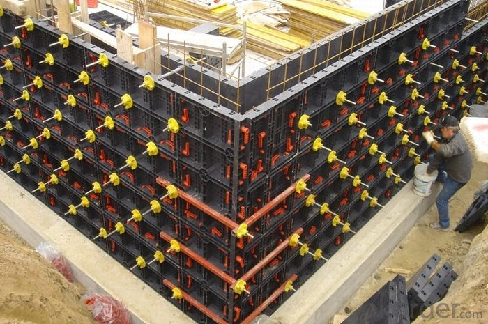 Plastic Formwork Concrete Formwork Parts of Tubular Scaffolding Scaffolding Importers Low Price