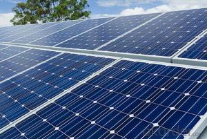 Polycrystalline Solar Panel 250W Hot Selling High Efficiency