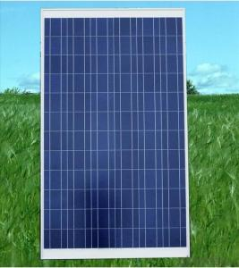 Polycrystalline Solar Panel 300W Hot Selling High Efficiency