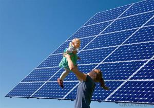 Polycrystalline Solar Panel 245W Hot Selling High Efficiency