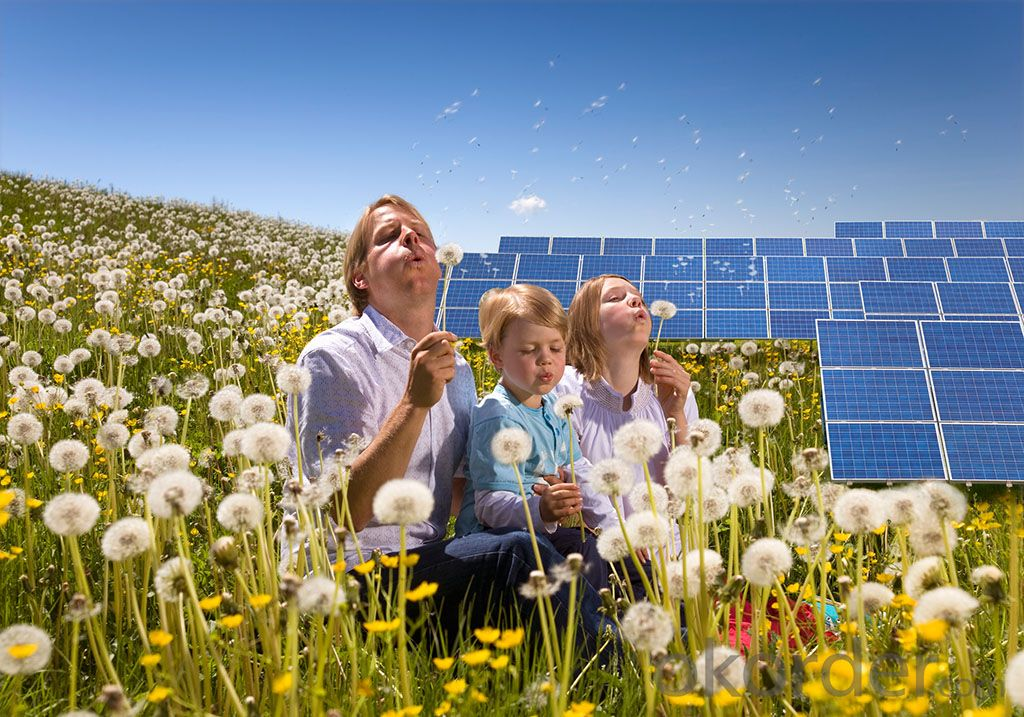 Polycrystalline Solar Panel 290W Hot Selling High Efficiency