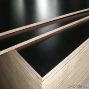 E0, E1, E2 Film Faced Plywood with Best Quality