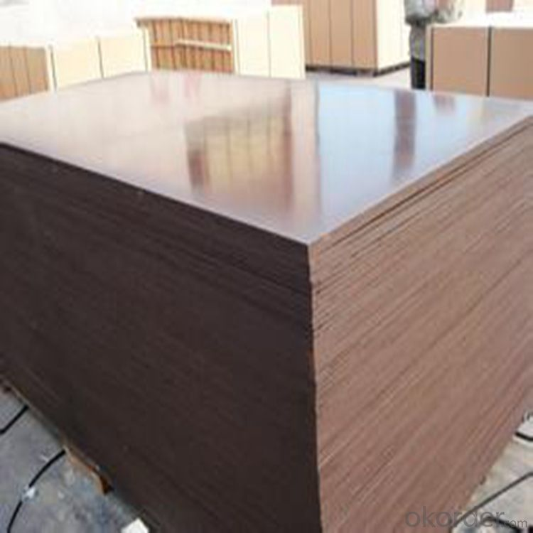 Faced Plywood 1220x2440/1250x2500
