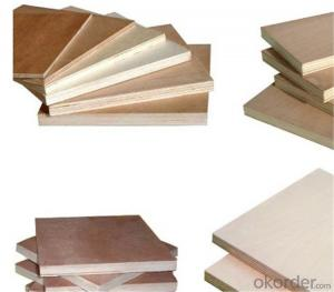 Veneer Faced Plywood for Construction with 10 Years' Experience
