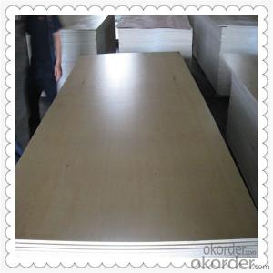 Film Faced Plywood with White Color Face for Highest Quality