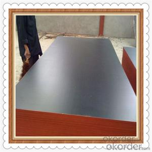 Brown Color Film Faced Plywood with Lowest Price and High Quality