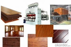 Short Cycle MDF Furniture Production Line/German Woodworking Machinery