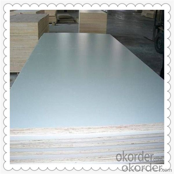 White Color 4'*8' feet Poplar Core Film Faced Plywood