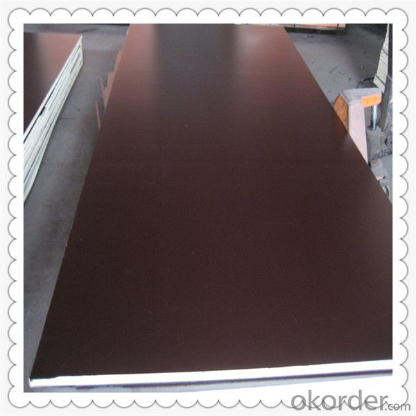 Brown Color Film Faced Plywood 18mm Thickness