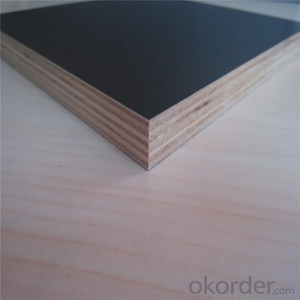 Filmed Faced Plywood for Hot Sale