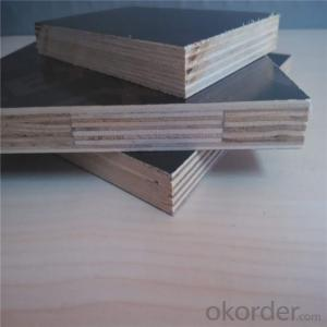 Veneer Faced Plywood for Construction with 14 Years' Experience