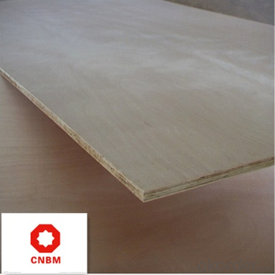 Film Faced Plywood with 16 Years' Experience