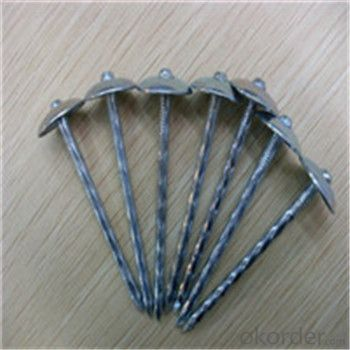 Umbrella Head Roofing Nails CE Certified Q195 /Q235