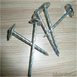 Umbrella Head Roofing Nails Hot Dipped and Electro Galvanized Factory