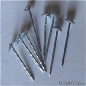 Umbrella Head Roofing Nails Galvanized Q195 /Q235 Factory