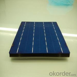 Poly 156X156mm2 Solar Cells Class A Made in China
