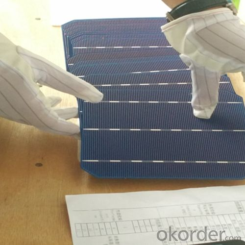 Poly 156X156mm2 Solar Cells Made in Class 1