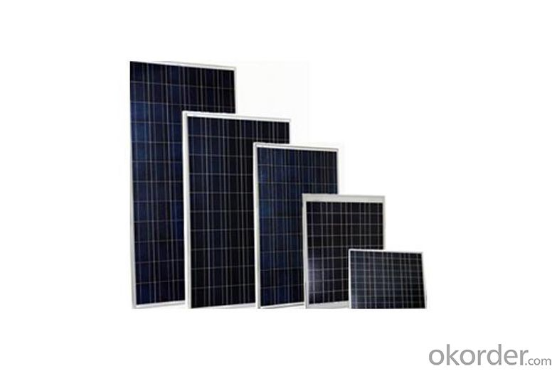 Solar Panel 240Wp special for Off-grid Solar Power System Paneles Solares