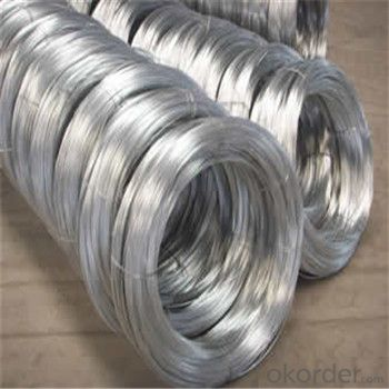 Galvanized Iron Wire/Hot Dipped and Electro Galvanized SGS Durable Quality BWG1-38