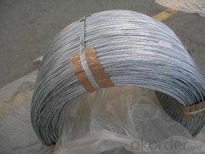 Galvanized Steel Wire with All Kinds of Specifications
