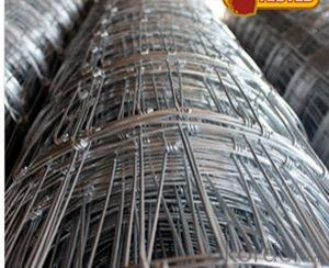 Crimped Wire Mesh,Steel Wire Mesh, Low Carbon Steel Wire Mesh