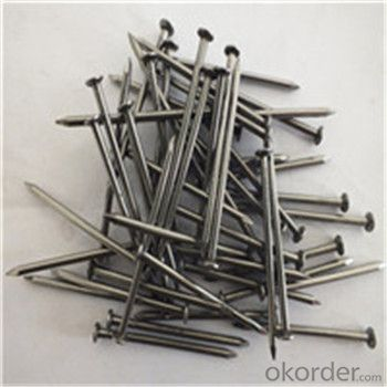 Q195/Q235 Common Nail Polished/Zinc Plated/Black Zinc Plated