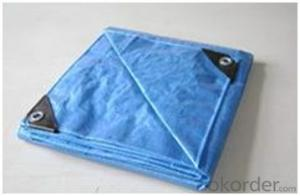 Orange PE Tarpaulin 3X4M Blue Poly Tarpaulin