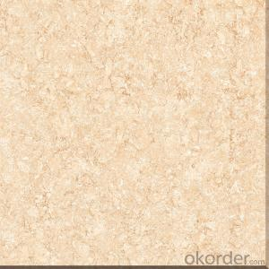 Polished Porcelain Tile Tulip series CMAX8J803/8J805