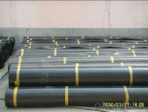 High Density Polyethylene HDPE Geomembrane