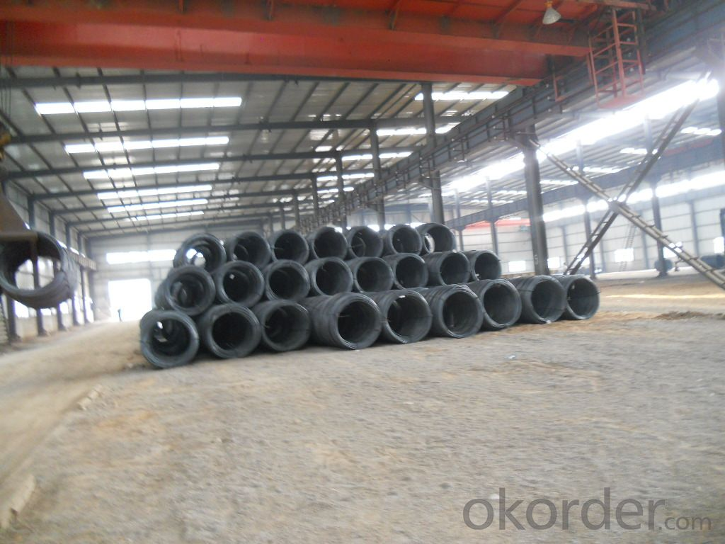 Hot Rolled Prime Steel Wire Rod in Coils