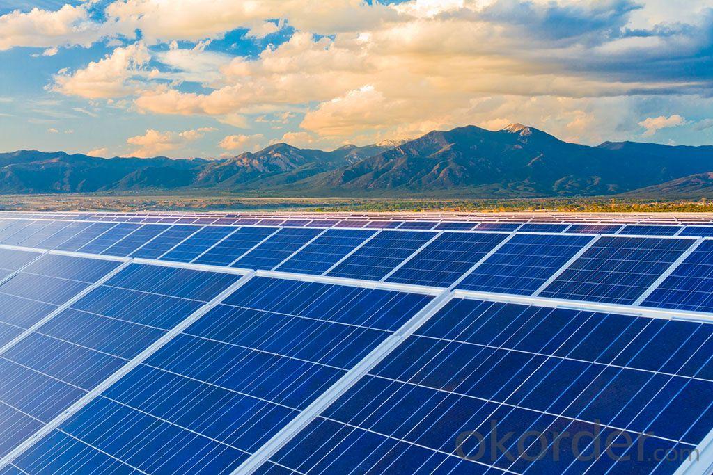 CNBM Poly Crystalline Solar PV Modules 300W