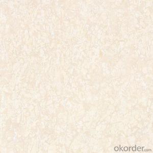 Polished Porcelain Tile Ice Age Serie CMAX46601/46602/46603