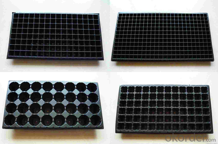 seedling planting plastic seeding tray for greenhouse