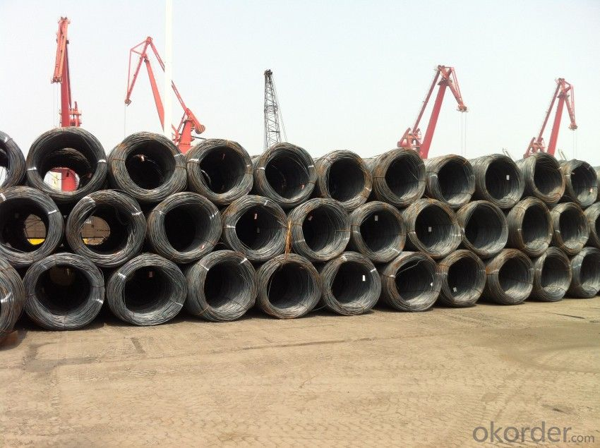 SAE1008 Wire Rods Best Quality and Lowest Price