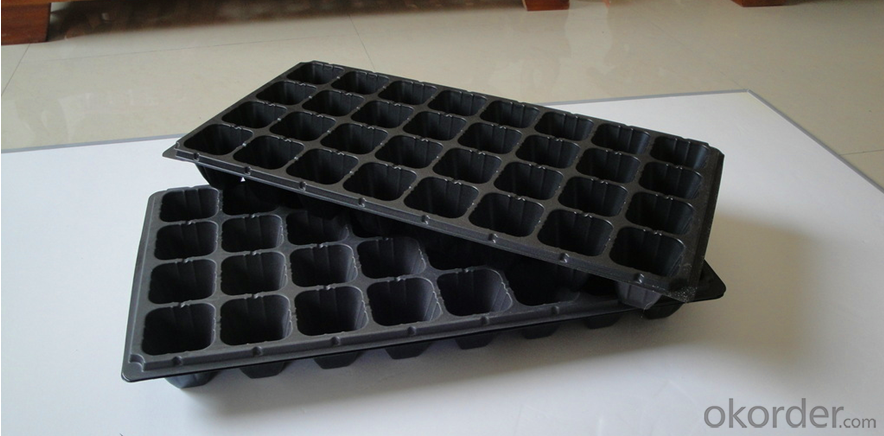 Hydroponic Seedling Planting Plastic Seeding Tray for Green House