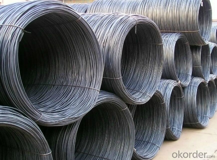 Hot Rolled Steel Wire Rod in Coils SAE1008B