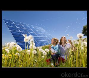 245W Direct Factory Sale Price 240-260Watt Solar Panels