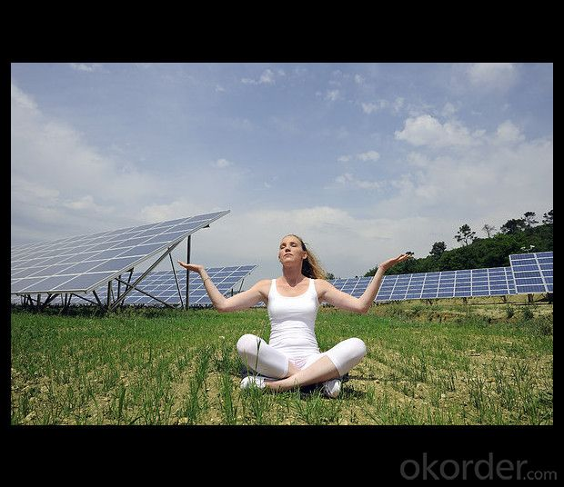 300W Direct Factory Sale Price 260-300Watt Solar Panels