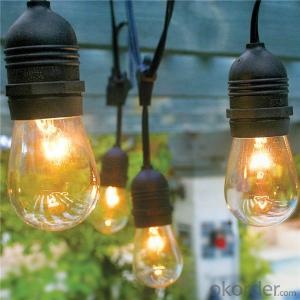 E26/E27 Vintage Commercial Hanging String Lights