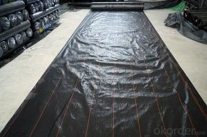 PP Fabric Weed Control Membrane for Farm