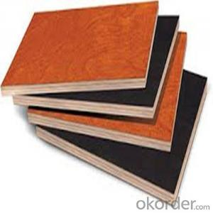 Professional Plywood Manufacturer from CNBM