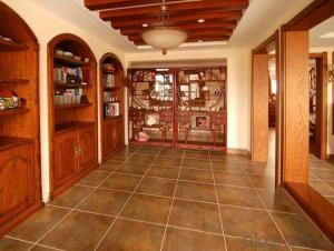 Nano Glossy Ceramic Floor Tile