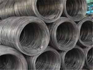 SAE1006B Steel Wire Rod 5.5mm with Best Quality in China
