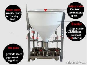 New Style Dry or Wet Automatic Feeding System for Pigs