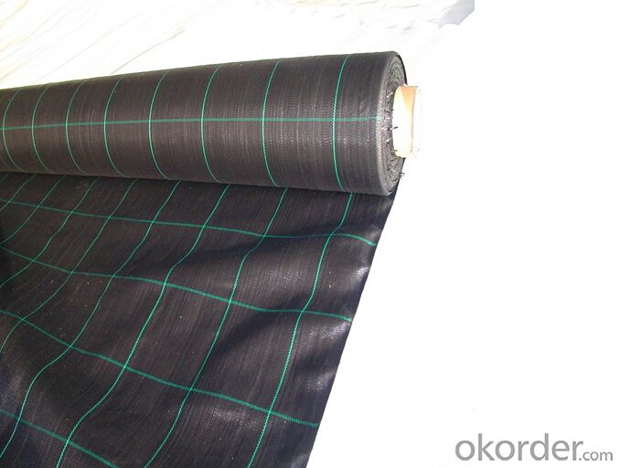 Polypropylene Woven Geotextile/Anti Weed Mat