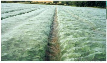 New Virgin HDPE Anti-insect Nets for Garden
