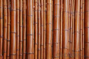 Natural Bamboo Sticks Natural Bamboo Stick