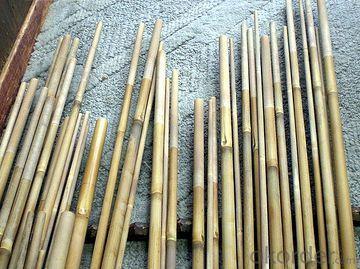 Natural White Bamboo Pole Natural White Bamboo