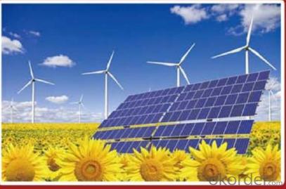 Mono 60w ,mono 65w  CNBM Solar Monocrystalline 125mm Series
